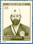 Mohammad Ali Jauhar-Khialfat Leader